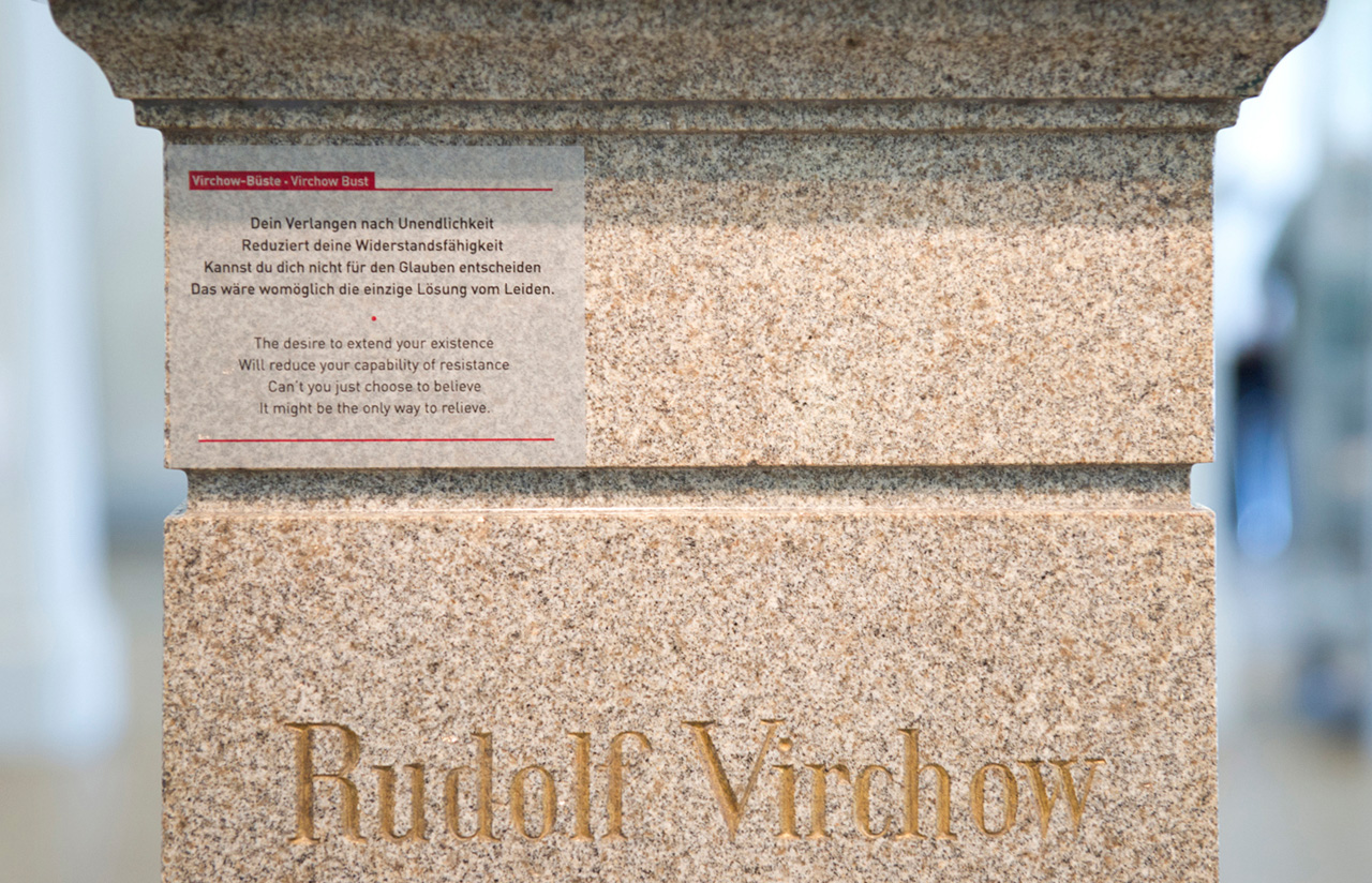 Station 8 | Virchow Bust | Poem